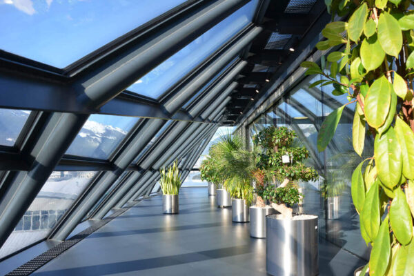 Oberflächenbeschichtung und Veredelung von Boeden und Waenden (4)